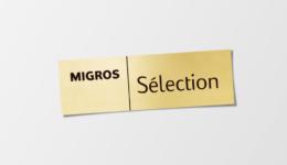 mselection_logo